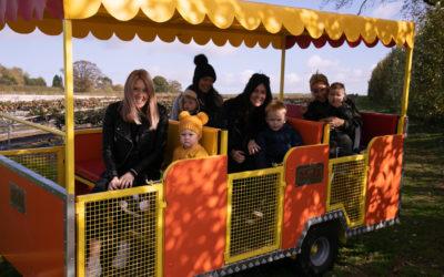 Pumpkin Express!