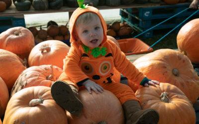 Pumpkintastic!