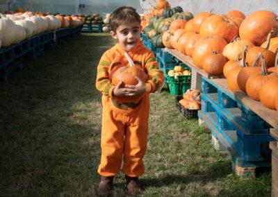 Pumpkin Fest 2018 (4)